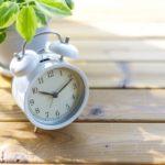 就労継続支援B型事業所の労働時間・日数。